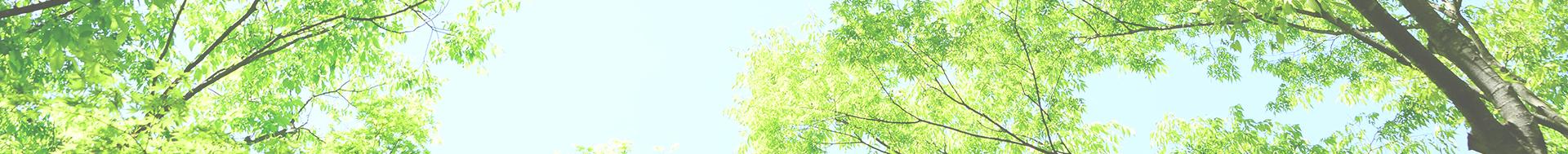札幌・直葬5万・家族葬14万・無宗教葬8万・生活保護葬・実質負担0円~・小規模葬儀・福祉葬│アイシンセレモニー