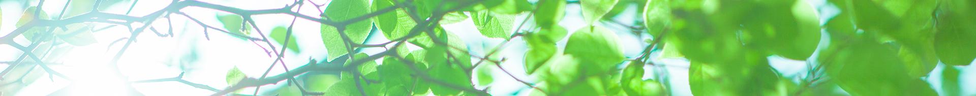 札幌・直葬5万・無宗教葬8万・家族葬14万・生活保護葬・実質負担0円~・小規模葬儀・福祉葬│アイシンセレモニー